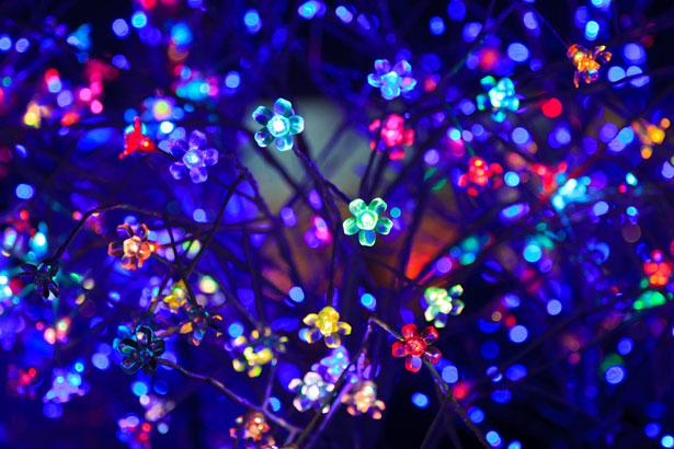 decorative-led-lights